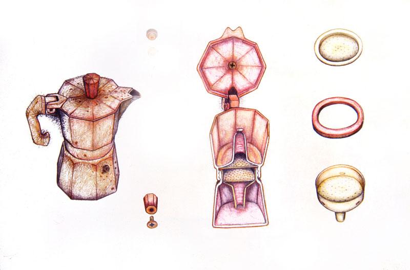 Simone Racheli – Anatomica Colf
