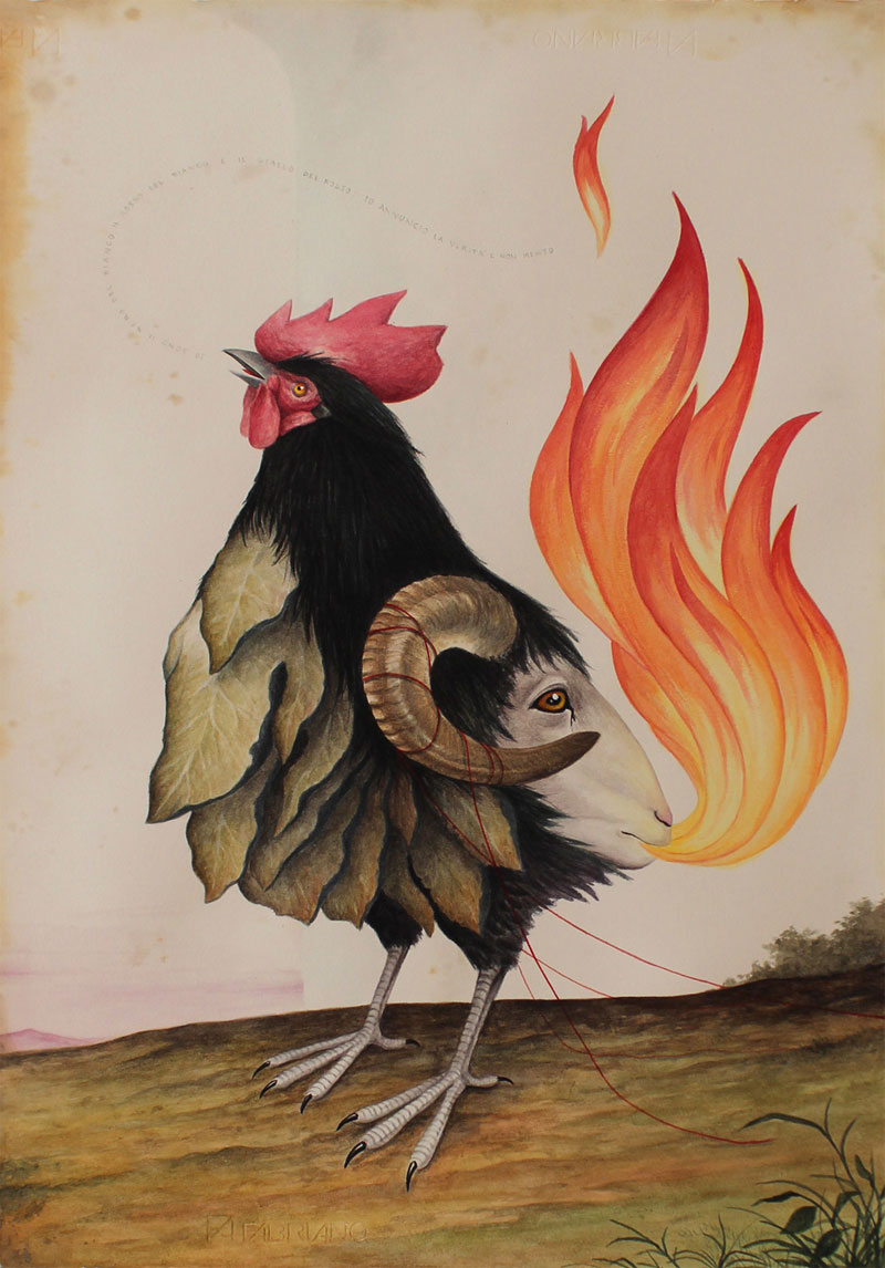 El Gato Chimney, Gallo Nero, 2014, Mixed Media On Cotton Paper, 70x50 Cm