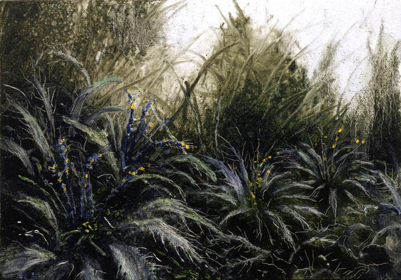 Francesco De Grandi, Piccola selva, 2008, oil on canvas, 35x50 cm