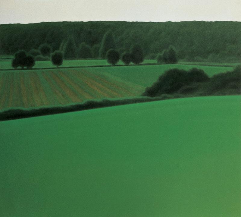Valentina D'Amaro, S.T., 2004. olio su tela, 90x100 cm