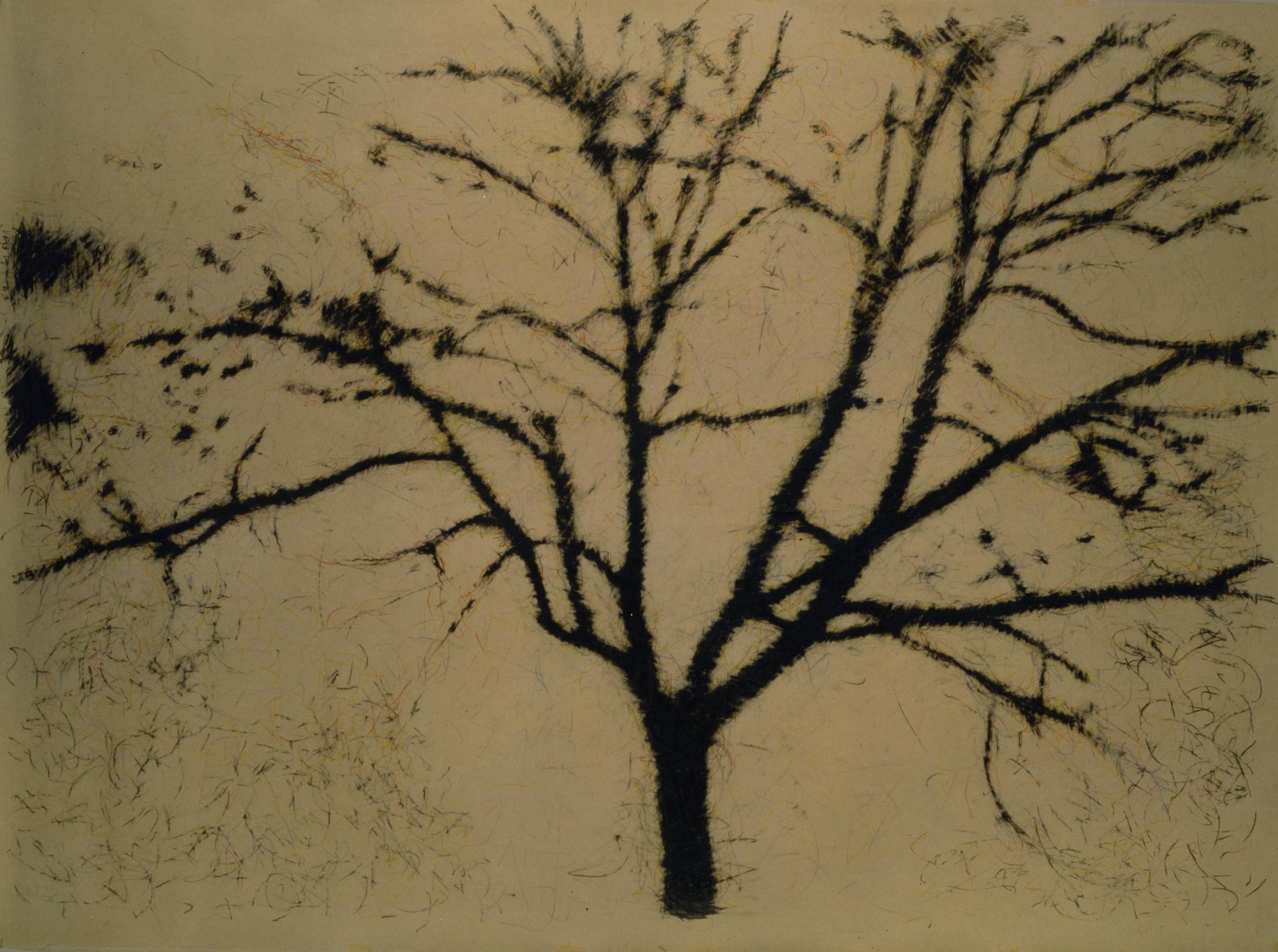 Luca Pancrazzi, Fuori Registro (albero), 1995, pencil on paper, 190×270 cm
